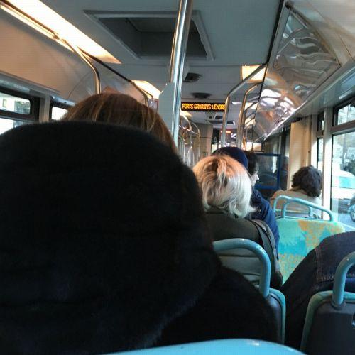bus-16-12-16