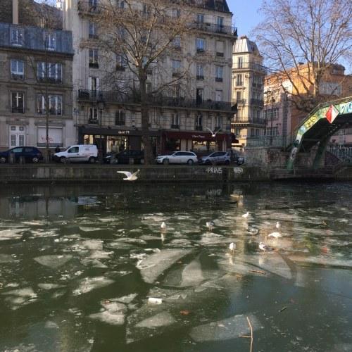 canal-gele-21-1-17_dh